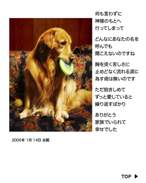 mataaeru-b1.jpg